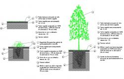 Tree planting structure cad drawing details dwg file