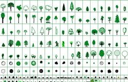 Trees 2d cad blocks