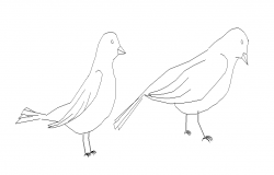 birds dwg file