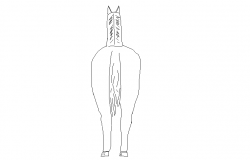 horse dwg file