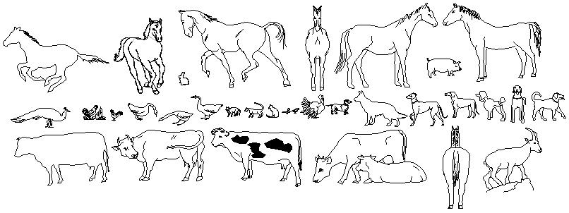 2D Block of Animals design drawing