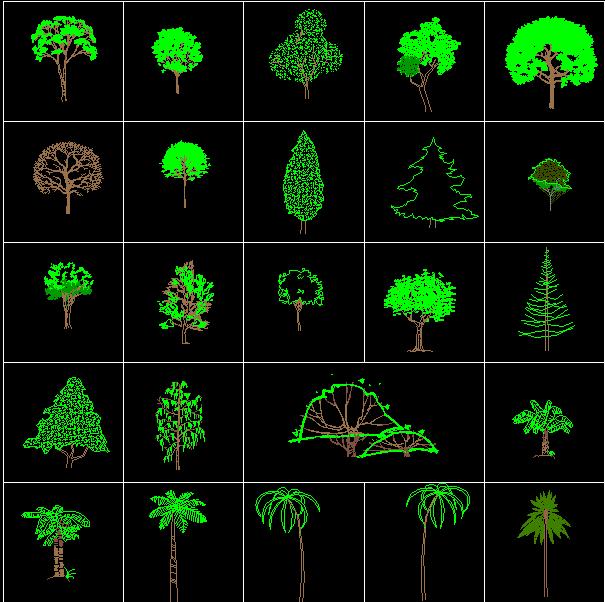 Tree Blocks