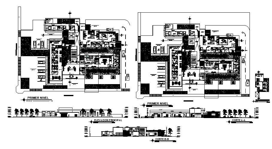 Autocad Drawing of the health center with section and elevation