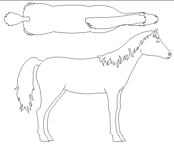 Creative horse side and top view cad design block dwg file