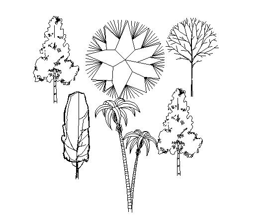 Different type of garden tree Block