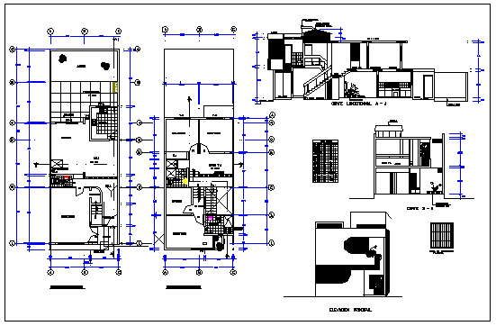 One family housing 2 storeys with interior green house design drawing