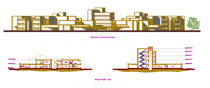 Elevation and section drawing of university in dwg file.
